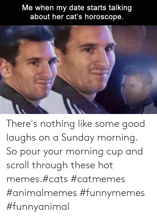 Sunday: There's nothing like some good laughs on a Sunday morning.  So pour your morning cup and scroll through these hot memes.#cats #catmemes #animalmemes #funnymemes #funnyanimal