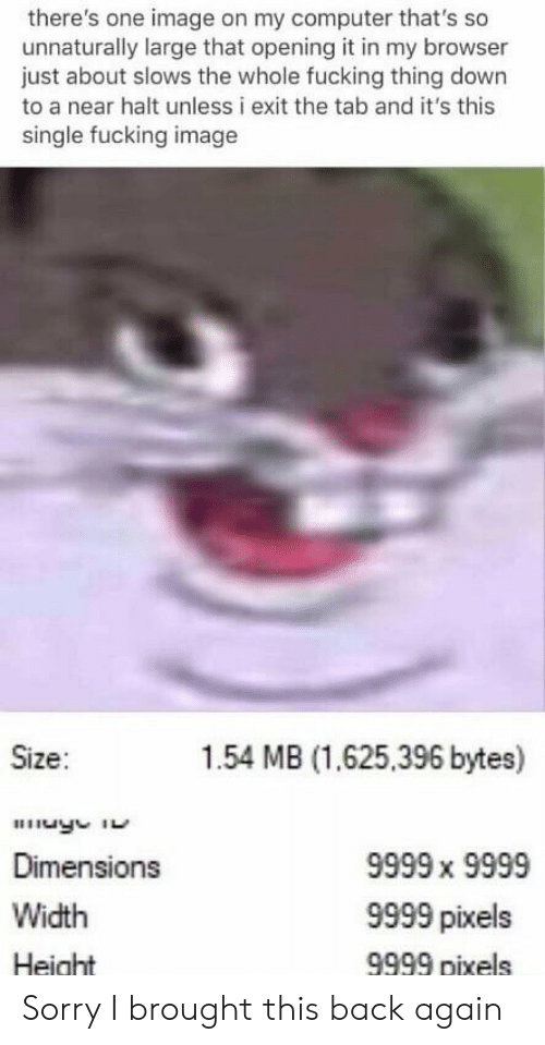 Fucking, Reddit, and Sorry: there's one image on my computer that's so  unnaturally large that opening it in my browser  just about slows the whole fucking thing down  to a near halt unless i exit the tab and it's this  single fucking image  Size:  1.54 MB (1.625,396 bytes)  Dimensions  Width  Height  9999 x 9999  9999 pixels  9999 pixels Sorry I brought this back again