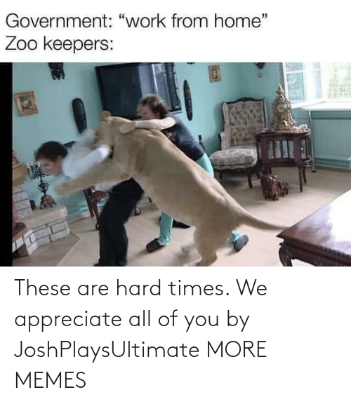 Appreciate: These are hard times. We appreciate all of you by JoshPlaysUltimate MORE MEMES