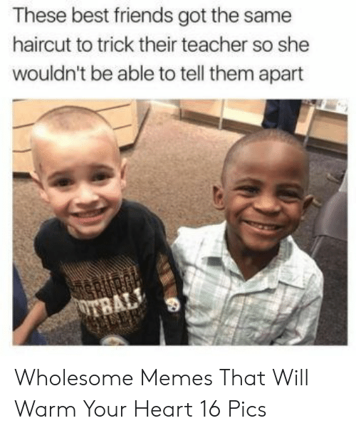 Friends, Haircut, and Memes: These best friends got the same  haircut to trick their teacher so she  wouldn't be able to tell them apart Wholesome Memes That Will Warm Your Heart 16 Pics