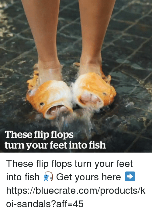 Memes, Fish, and Sandals: These flip flops  turn your feet into fish These flip flops turn your feet into fish 🎣   Get yours here ➡️ https://bluecrate.com/products/koi-sandals?aff=45