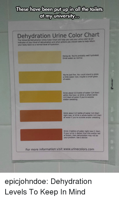 urine: These have been put up in all the toilets  at my university.  Dehydration Urine Color Chart  The following Dehydration Urine Color Chart will heip you use your urine color as an  indicator of your level of dehydration and what actions you should take to help return  your body back to a normal level of hydration  Doing ok. You're probably well hydrated.  Drink water as normal.  You're just fine. You could stand to drink  a little water now, maybe a small glass  of water  Drink about 1/2 bottie of water (1/4 liter)  within the hour, or drink a whole bottle  (1/2 liter) of water if you're outside  and/or sweating  Drink about 1/2 bottle of water (1/4 liter)  right now, or drink a whole bottle (1/2 liter)  water if you're outside and/or sweating  Drink 2 bottles of water right now (1 liter).  If your urine is darker than this and/or red  or brown, then dehydration may not be  your problem. See a doctor  For more information visit www.urinecolors.com epicjohndoe:  Dehydration Levels To Keep In Mind