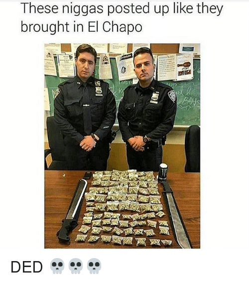 El Chapo, Black Twitter, and They: These niggas posted up like they  brought in El Chapo  ne DED 💀💀💀