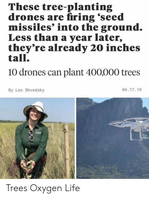 Life, Drones, and Oxygen: These tree-planting  drones are firing 'seed  missiles' into the ground.  Less than a year later,  they're already 20 inches  tall.  10 drones can plant 400,000 trees  04.17.19  By Leo Shvedsky Trees Oxygen Life