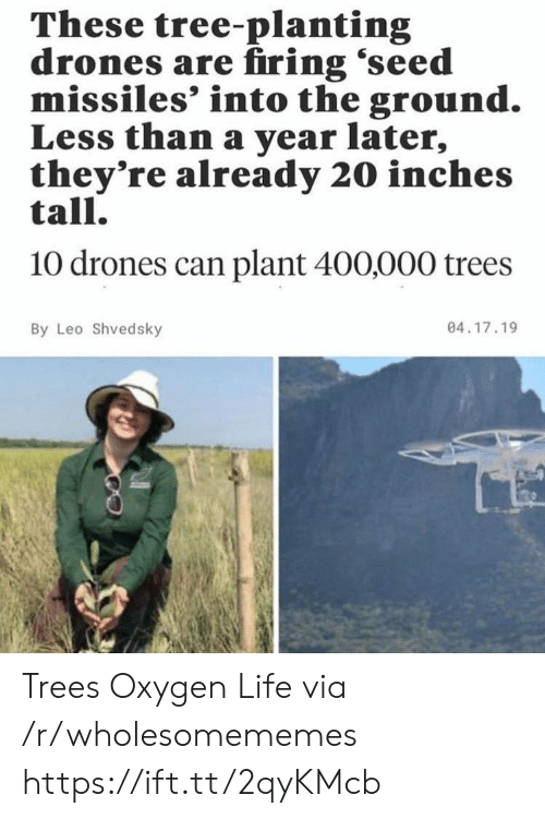 Oxygen: These tree-planting  drones are firing 'seed  missiles' into the ground.  Less than a year later,  they're already 20 inches  tall.  10 drones can plant 400,000 trees  04.17.19  By Leo Shvedsky Trees Oxygen Life via /r/wholesomememes https://ift.tt/2qyKMcb