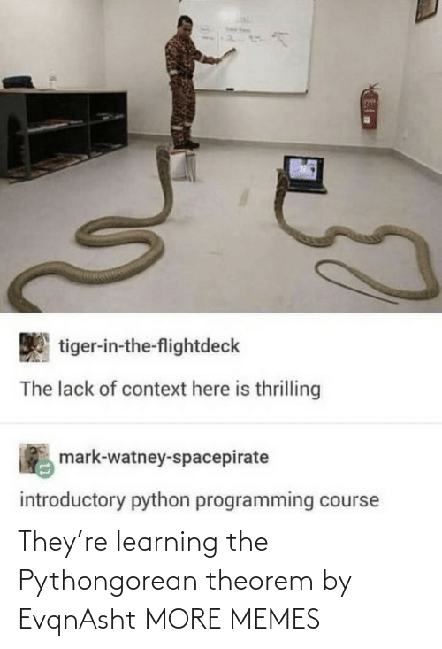 Learning: They're learning the Pythongorean theorem by EvqnAsht MORE MEMES
