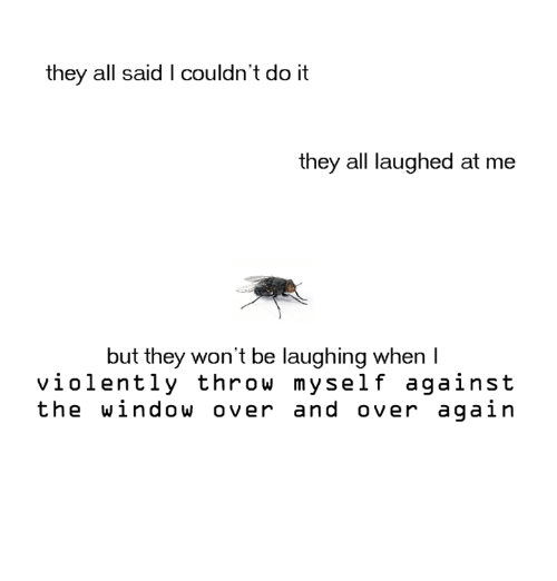 Dank, 🤖, and Window: they all said I couldn't do it  they all laughed at me  but they won't be laughing when I  violently throw myself against  the window over and over again