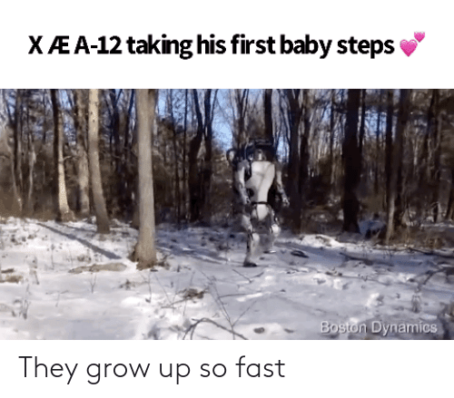 fast: They grow up so fast