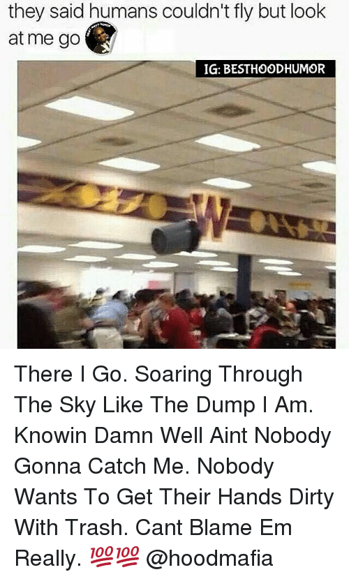 the dump: they said humans couldn't fly but look  at me go  IG: BESTHOODHUMOR There I Go. Soaring Through The Sky Like The Dump I Am. Knowin Damn Well Aint Nobody Gonna Catch Me. Nobody Wants To Get Their Hands Dirty With Trash. Cant Blame Em Really. 💯💯 @hoodmafia