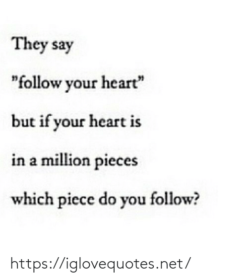 """Heart, Net, and They: They say  """"follow your heart""""  but if your heart is  in a million pieces  which piece do you follow? https://iglovequotes.net/"""