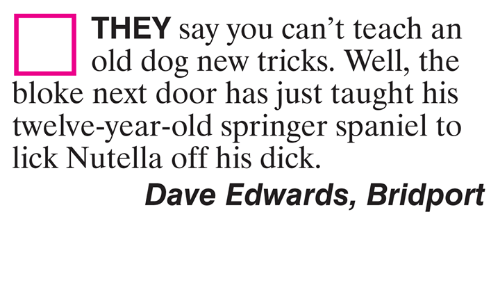 Memes, Dick, and Nutella: THEY say you can't teach an  old dog new tricks. Well, the  bloke next door has just taught his  twelve-year-old springer spaniel to  lick Nutella off his dick.  Dave Edwards, Bridport