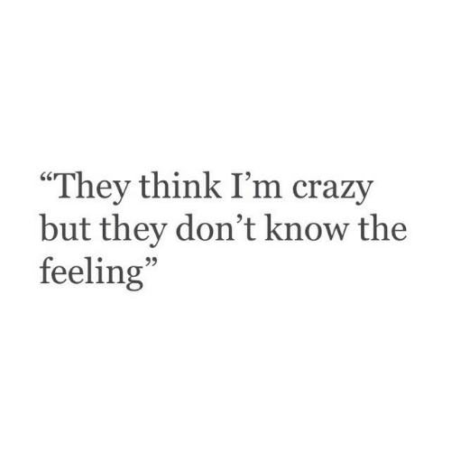 "The Feeling: ""They think I'm crazy  but they don't know the  feeling  95"