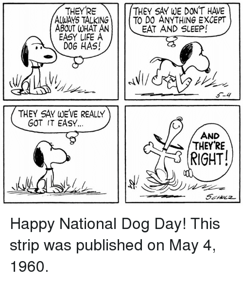 Life, Memes, and Happy: THEYRE  ALWAYS TALKING  ABOUT WHAT AN  EASY LIFE A  D0G HAS!  THEY SAY WE DON'T HAVE  TO DO ANYTHING EXCEPT  EAT AND SLEEP!  THEY SAY WEVE REALLY  GOT IT EASY.  AND  THEYRE  RIGHT! Happy National Dog Day! This strip was published on May 4, 1960.