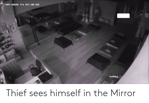thief: Thief sees himself in the Mirror