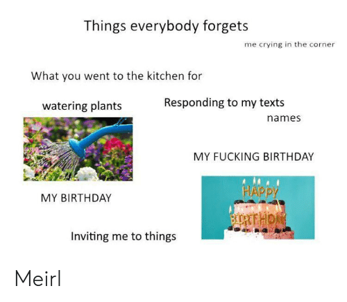 Birthday, Crying, and Fucking: Things everybody forgets  me crying in the corner  What you went to the kitchen for  Responding to my texts  watering plants  names  MY FUCKING BIRTHDAY  HAPPY  MY BIRTHDAY  BURTTHON  Inviting me to things Meirl