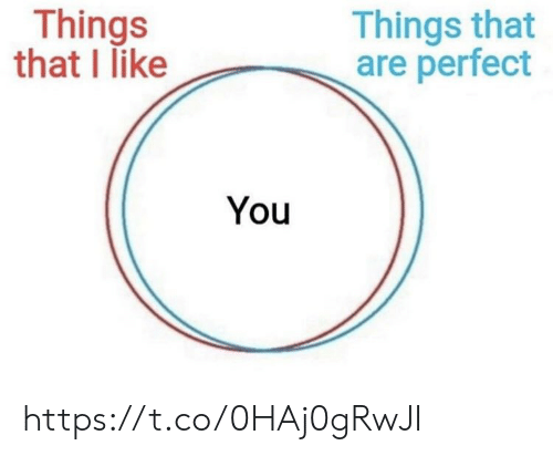 Memes, 🤖, and You: Things that  are perfect  Things  that I like  You https://t.co/0HAj0gRwJI