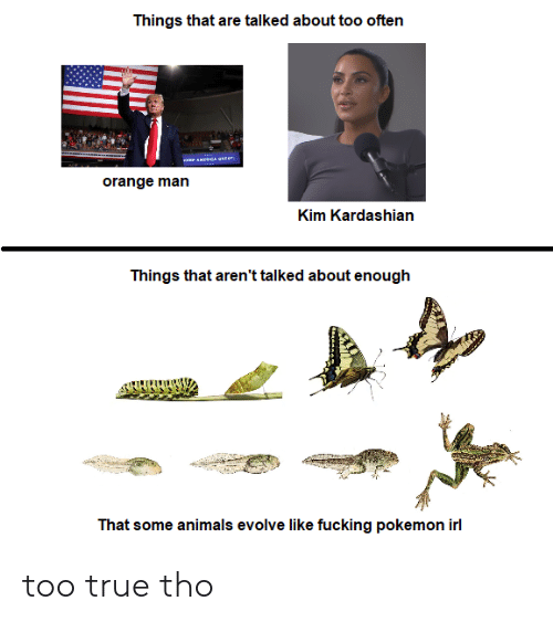 Kim Kardashian: Things that are talked about too often  orange man  Kim Kardashian  Things that aren't talked about enough  That some animals evolve like fucking pokemon irl too true tho