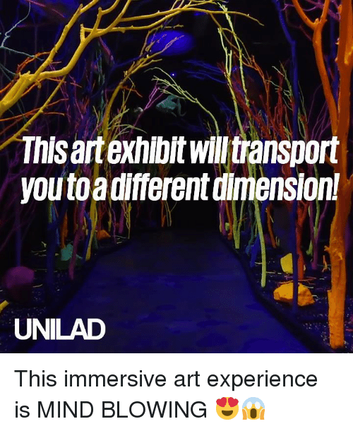 Dank, Experience, and Mind: This artexhlbit willtransport  you toadifferent dimension  UNILAD This immersive art experience is MIND BLOWING 😍😱