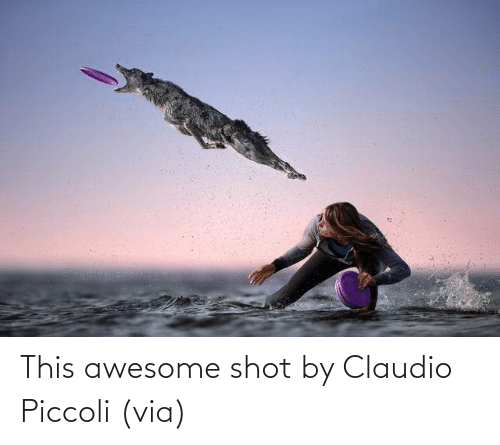 shot: This awesome shot by Claudio Piccoli (via)