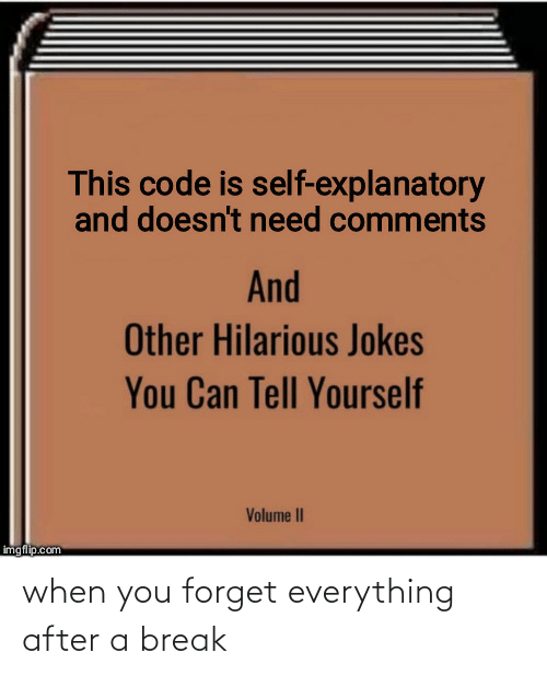 Imgflip Com: This code is self-explanatory  and doesn't need comments  And  Other Hilarious Jokes  You Can Tell Yourself  Volume II  imgflip.com when you forget everything after a break