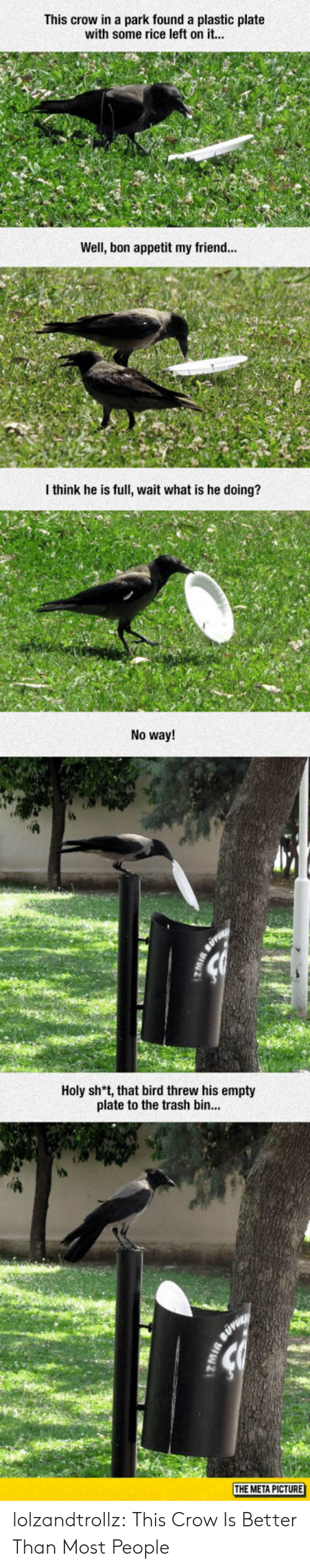 Trash, Tumblr, and Blog: This crow in a park found a plastic plate  with some rice left on it...  Well, bon appetit my friend...  I think he is full, wait what is he doing?  No way!  Holy sh*t, that bird threw his empty  plate to the trash bin  THE META PICTURE lolzandtrollz:  This Crow Is Better Than Most People