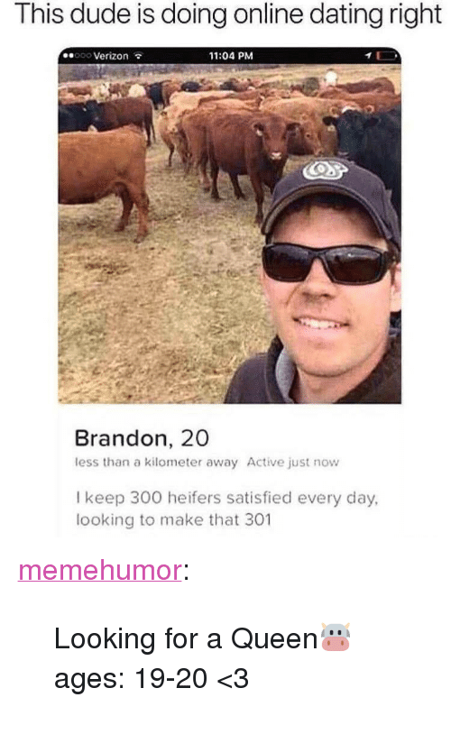 """Online dating: This dude is doing online dating right  ooo Verizon  11:04 PM  Brandon, 20  less than a kilometer away Active just now  l keep 300 heifers satisfied every day,  looking to make that 301 <p><a href=""""http://memehumor.net/post/173445158809/looking-for-a-queen-ages-19-20-3"""" class=""""tumblr_blog"""">memehumor</a>:</p>  <blockquote><p>Looking for a Queen🐮 ages: 19-20 &lt;3</p></blockquote>"""
