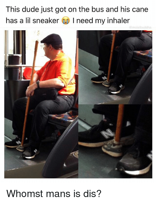 Dude, Funny, and Got: This dude just got on the bus and his cane  has a lil sneaker I need my inhaler  uddh Whomst mans is dis?