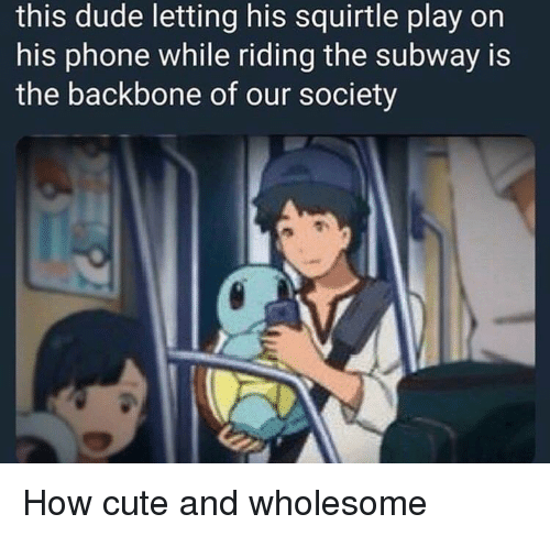 squirtle: this dude letting his squirtle play on  his phone while riding the subway is  the backbone of our society How cute and wholesome
