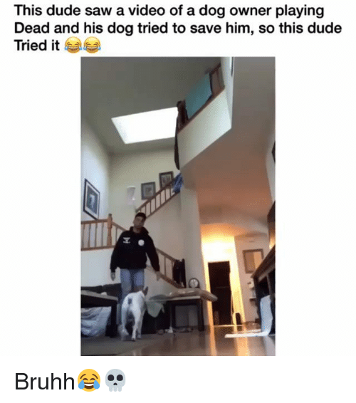 Playing Dead: This dude saw a video of a dog owner playing  Dead and his dog tried to save him, so this dude  Tried it Bruhh😂💀
