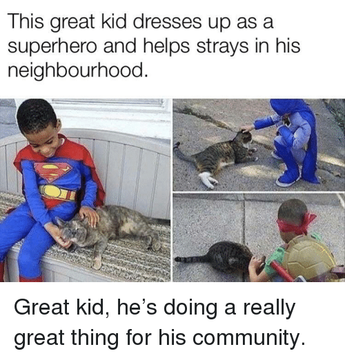 Community, Superhero, and Dresses: This great kid dresses up asa  superhero and helps strays in his  neighbourhood. Great kid, he's doing a really great thing for his community.