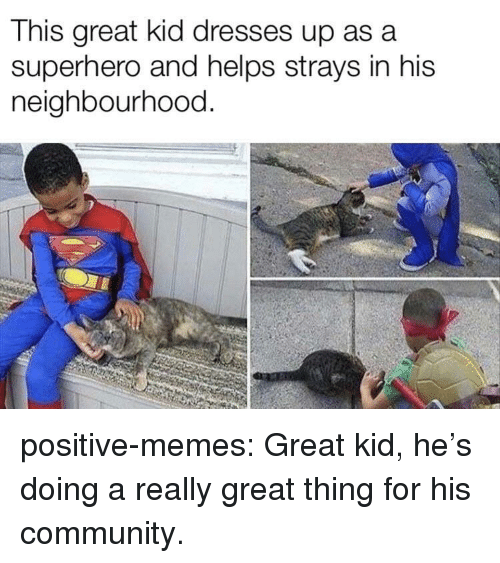 Community, Memes, and Superhero: This great kid dresses up asa  superhero and helps strays in his  neighbourhood. positive-memes:  Great kid, he's doing a really great thing for his community.