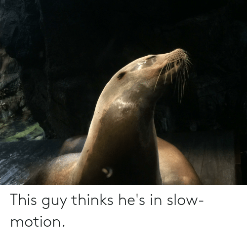 Slow Motion: This guy thinks he's in slow-motion.