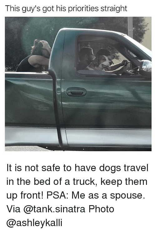 trucking: This guy's got his priorities straight It is not safe to have dogs travel in the bed of a truck, keep them up front! PSA: Me as a spouse. Via @tank.sinatra Photo @ashleykalli
