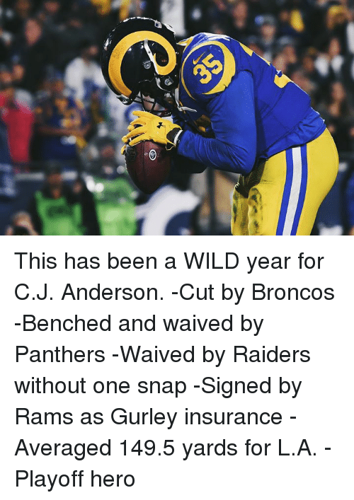 Broncos, Panthers, and Raiders: This has been a WILD year for C.J. Anderson.  -Cut by Broncos  -Benched and waived by Panthers  -Waived by Raiders without one snap  -Signed by Rams as Gurley insurance  -Averaged 149.5 yards for L.A.  -Playoff hero