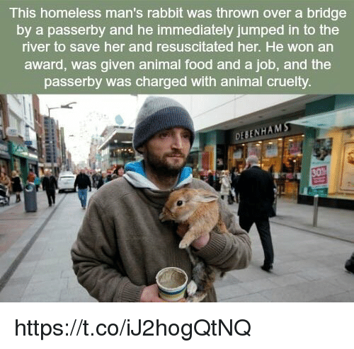 resuscitation: This homeless man's rabbit was thrown over a bridge  by a passerby and he immediately jumped in to the  river to save her and resuscitated her. He won an  award, was given animal food and a job, and the  passerby was charged with animal cruelty  DEBENHAMS https://t.co/iJ2hogQtNQ