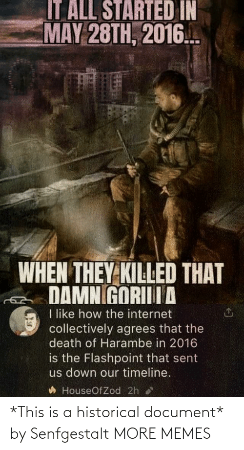 This Is A: *This is a historical document* by Senfgestalt MORE MEMES