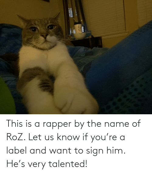 label: This is a rapper by the name of RoZ. Let us know if you're a label and want to sign him. He's very talented!