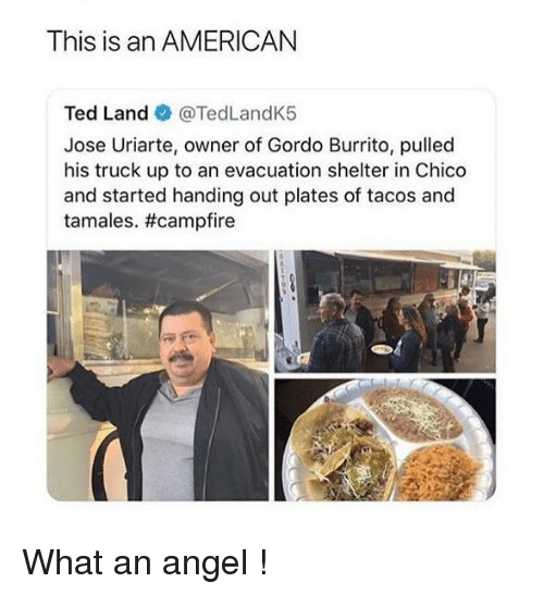 tamales: This is an AMERICAN  Ted Land @TedLandK5  Jose Uriarte, owner of Gordo Burrito, pulled  his truck up to an evacuation shelter in Chico  and started handing out plates of tacos and  tamales. What an angel !