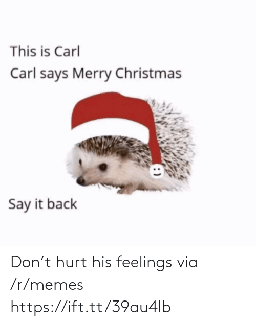 Merry Christmas: This is Carl  Carl says Merry Christmas  Say it back Don't hurt his feelings via /r/memes https://ift.tt/39au4lb