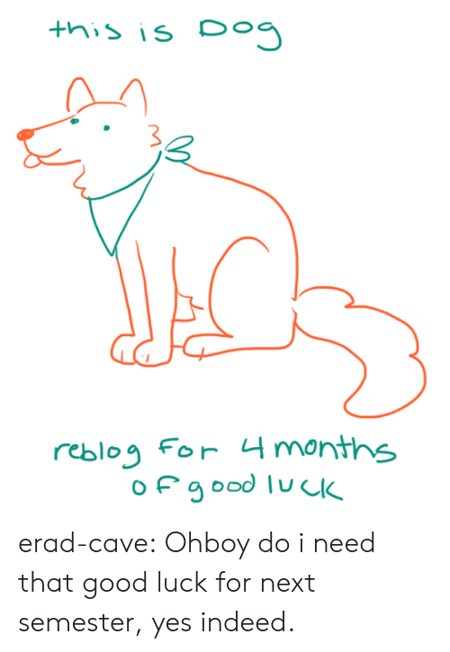 Tumblr, Blog, and Good: this is Do  Ал  reblog For 4 months erad-cave: Ohboy do i need that good luck for next semester, yes indeed.