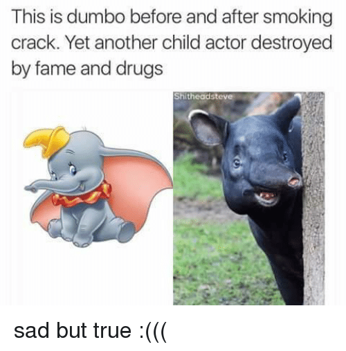 Dumbo: This is dumbo before and after smoking  crack. Yet another child actor destroyed  by fame and drugs  Shitheadsteve sad but true :(((