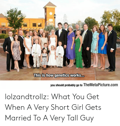 Tumblr, Blog, and Girl: This is how genetics works...  you should probably go to TheMetaPicture.com lolzandtrollz:  What You Get When A Very Short Girl Gets Married To A Very Tall Guy
