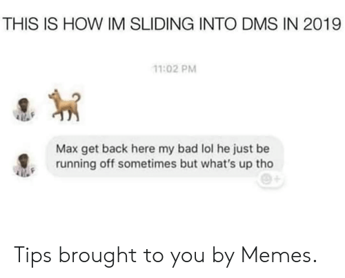 Bad, Dank, and Lol: THIS IS HOW IM SLIDING INTO DMS IN 2019  11:02 PM  Max get back here my bad lol he just be  running off sometimes but what's up tho Tips brought to you by Memes.