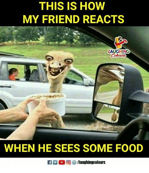 Food, Indianpeoplefacebook, and How: THIS IS HOW  MY FRIEND REACTS  AUGHING  WHEN HE SEES SOME FOOD