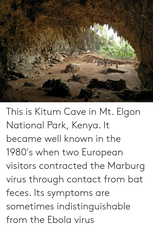 Ebola, Kenya, and Virus: This is Kitum Cave in Mt. Elgon National Park, Kenya. It became well known in the 1980's when two European visitors contracted the Marburg virus through contact from bat feces. Its symptoms are sometimes indistinguishable from the Ebola virus