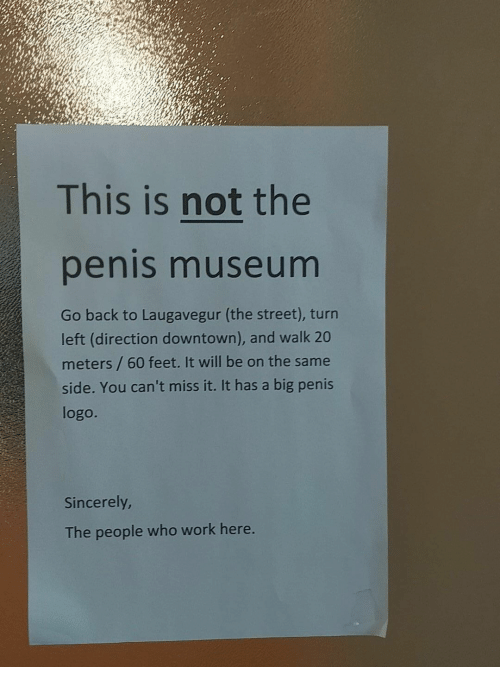 Work, Penis, and Sincerely: This is not the  penis museum  Go back to Laugavegur (the street), turn  left (direction downtown), and walk 20  meters / 60 feet. It will be on the same  side. You can't miss it. It has a big penis  logo.  Sincerely  The people who work here.