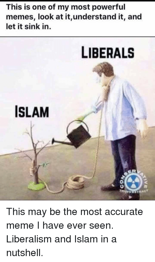 Meme, Memes, and Islam: This is one of my most powerful  memes, look at it,understand it, and  let it sink in.  LIBERALS  ISLAM  0