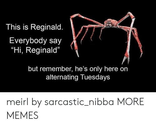 """Dank, Memes, and Target: This is Reginald.  Everybody say  """"Hi, Reginald""""  but remember, he's only here on  alternating Tuesdays meirl by sarcastic_nibba MORE MEMES"""