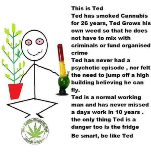 Cannabis: This is Ted  Ted has smoked Cannabis  for 26 years, Ted Grows his  own weed so that he does  not have to mix with  criminals or fund organised  crime  Ted has never had a  psychotic episode, nor felt  the need to jump off a high  building believing he can  fly.  Ted is a normal working  man and has never missed  a days work in 10 years.  the only thing Ted is a  danger too is the fridge  Be smart, be like Ted