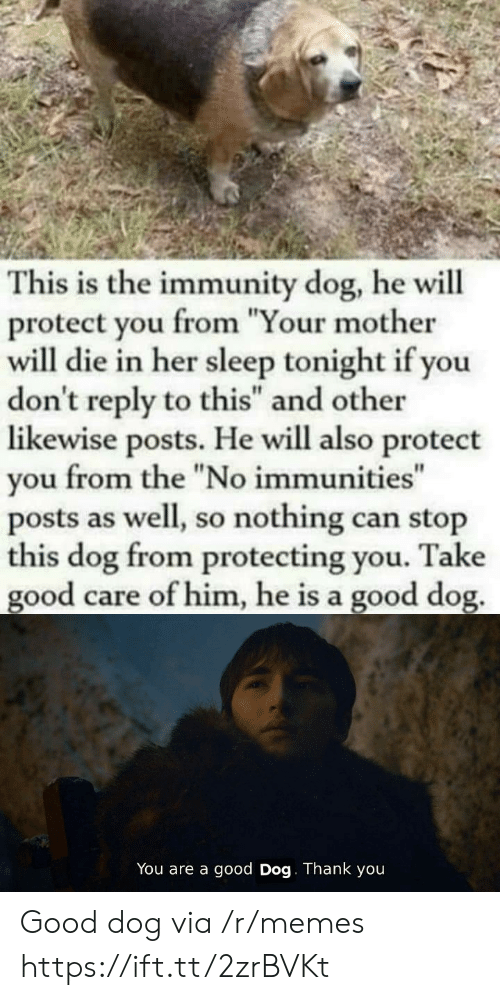 "Protect You: This is the immunity dog, he will  protect you from ""Your mother  will die in her sleep tonight if you  don't reply to this"" and other  likewise posts. He will also protect  from the ""No immunities""  you  posts as well, so nothing can stop  this dog from protecting you.  good care of him, he is a good dog.  Take  You are a good Dog. Thank you Good dog via /r/memes https://ift.tt/2zrBVKt"